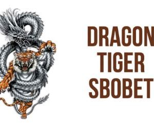 Guide on How to Play Dragon Tiger Cards at SBOBET Casino Agents
